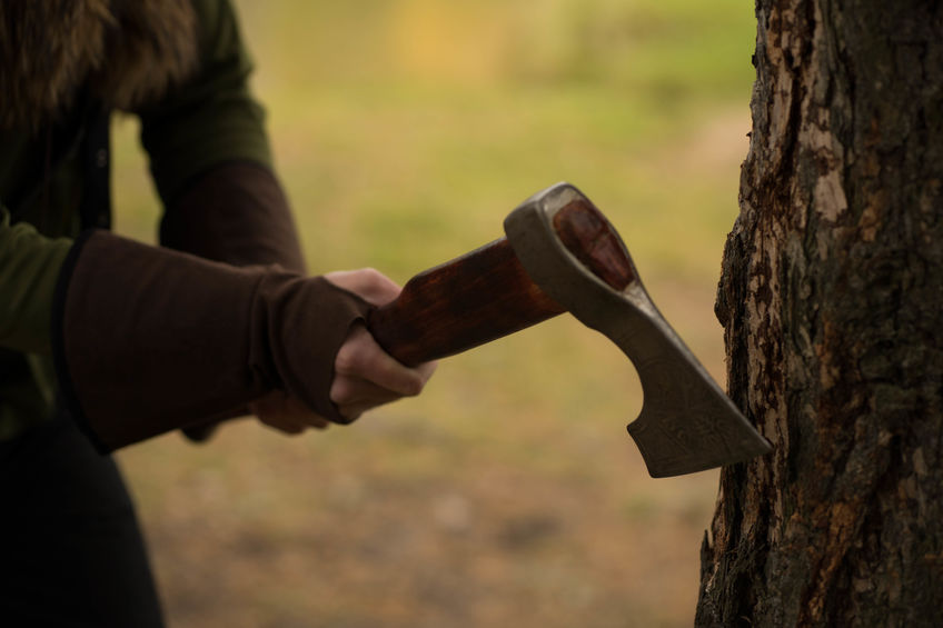 איסור כריתת עצים בישראל